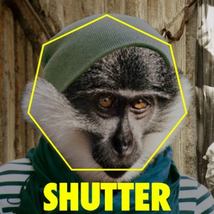 Shutter Clothing x SLip …